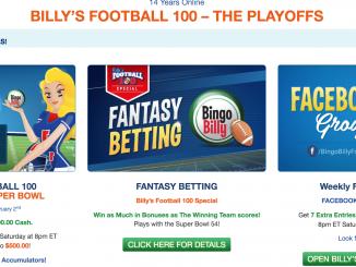 bingo billy screenshot